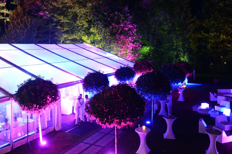 Hochzeit im Garten Feier